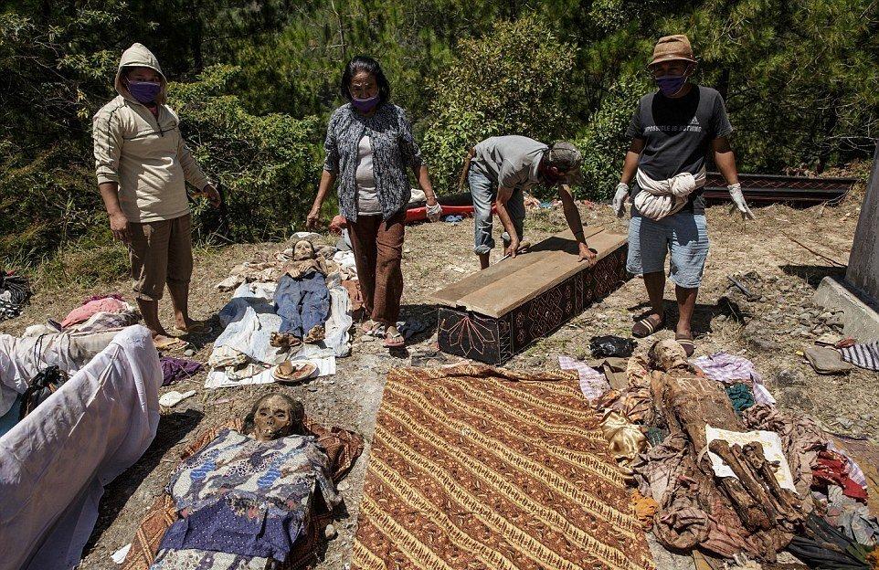 Во время обряда Манене тораджи высушивают мумии троих умерших родственников, а затем чистят их и оде