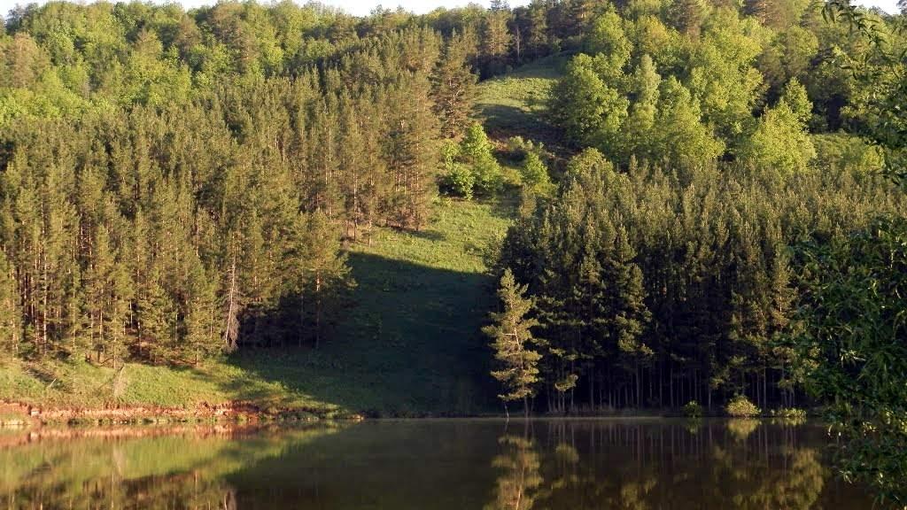 Озеро Багряж, речка Багряжка