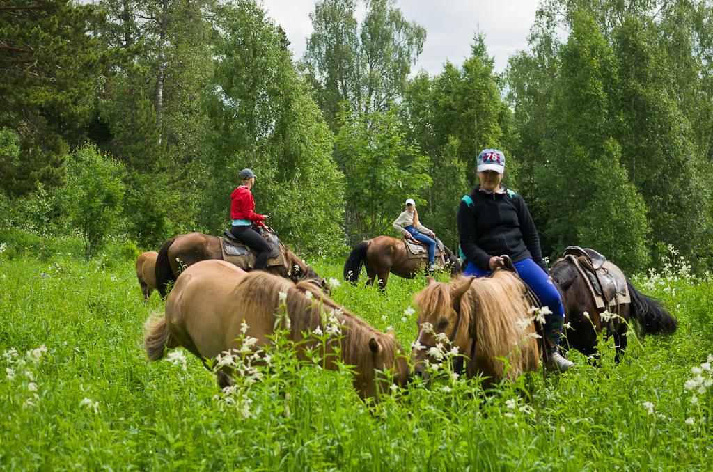 1. Конный поход в горы Башкирии. По дороге к вершине Ялангас останавливались, чтобы дать передохнуть лошадям. Снято на фотоаппарат Nikon D5100 с объективом Nikon 17-55mm f/2.8G.