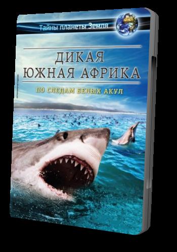 Дикая Южная Африка. По следам белых акул