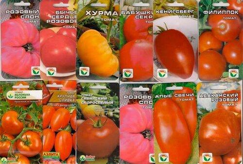 Сорта томатов новинки нашей коллекции 2014 года.