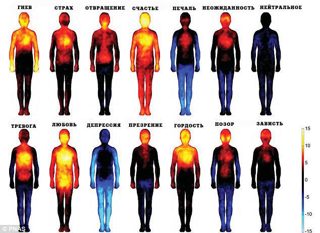 Ученые составили телесную карту эмоций человека