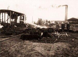 Пожар петербургской товарной станции. 1910 г.