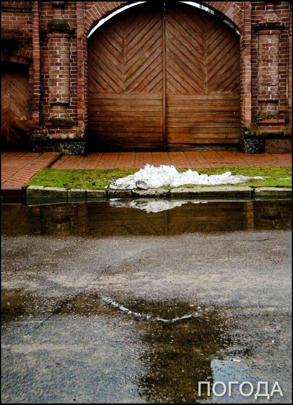 10 января, Вот и весь наш снег на сегодня! Чем богаты, тем и рады.