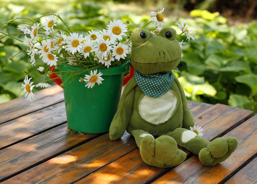 【本博精典素材篇】夏天的花卉让人陶醉, - 浪漫人生 - .