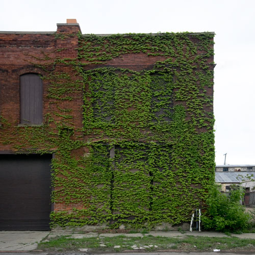 Зеленые дома в городе-призраке Детройт