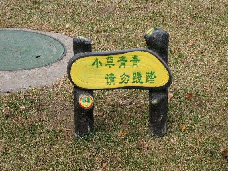 """""""Маленькая трава зеленая-зеленая, пожалуйста, не наступайте"""""""