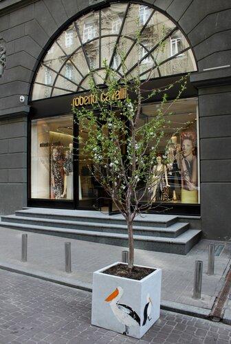 Дерево в декоративной кадушке