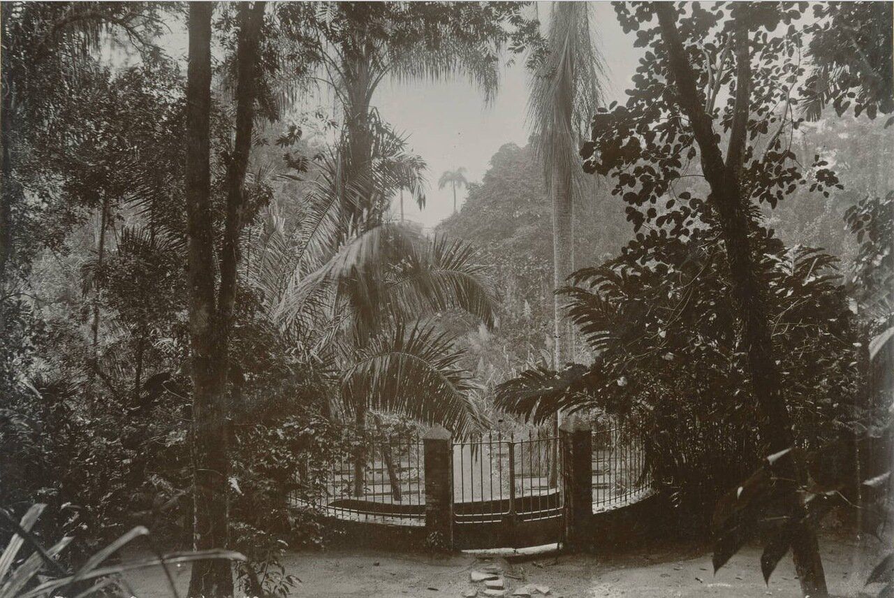 Вход. Ботанический сад