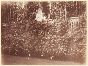 40. Небольшой деревянный домик в саду Фермерского дворца