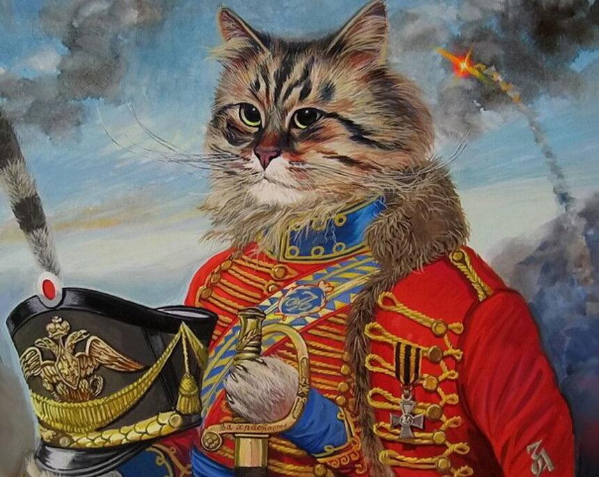 картинки кота солдата были, сути