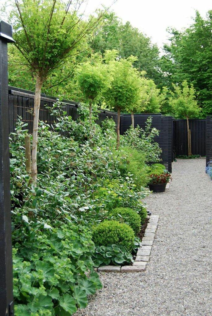 Садовые дворики. Ландшафтный дизайн  - фото 18