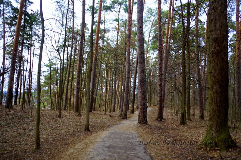 Прогулочная дорожка, Санаторий имени Герцена