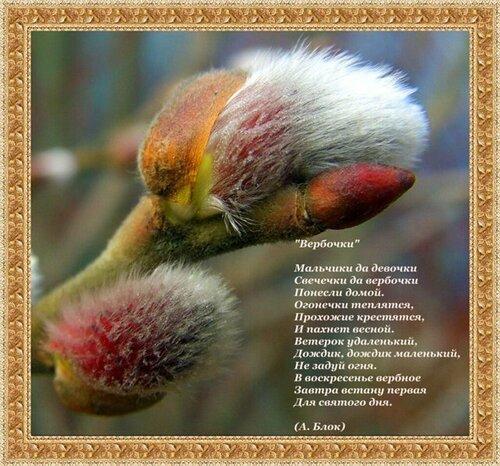 Вербочки Стихотворение А. Блока открытка поздравление картинка