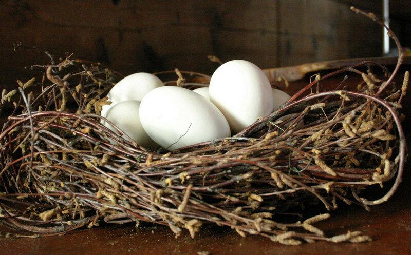 Старинные сонники утверждали, что яйца снятся к гостям, кто-то явится в дом.