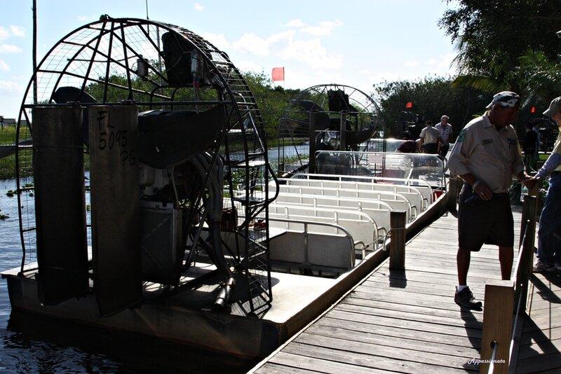 Парк Эвеглейдс США, Флорида, Everglades National Park