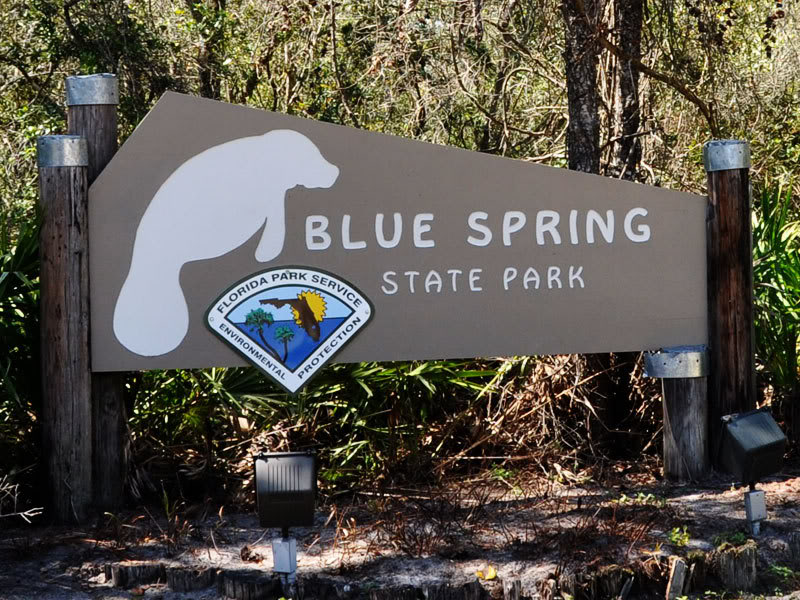 bluesprings-sign.jpgBlue Spring State Park