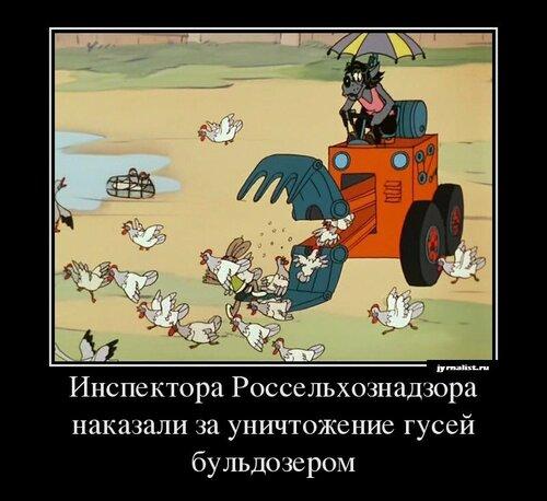 Инспектора россельхознадзора наказали за уничтожение гусей бульдозером
