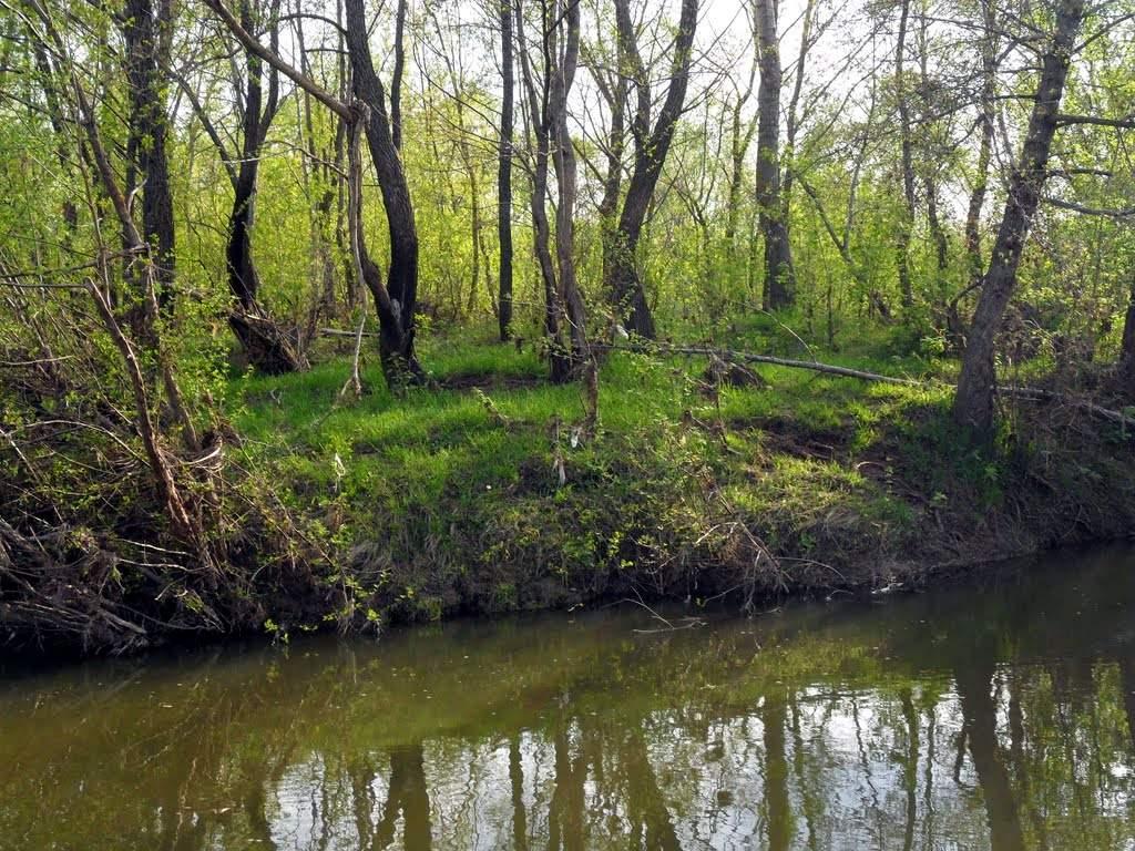 Река Лесной Зай
