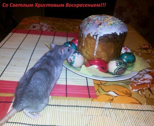 http://img-fotki.yandex.ru/get/9828/58279622.f/0_e8ae3_bb4f8442_L.jpg