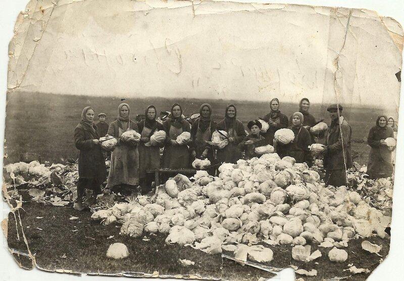 Большая капуста. 1927-32