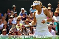 http://img-fotki.yandex.ru/get/9829/14186792.35/0_d960c_1d237c5_orig.jpg