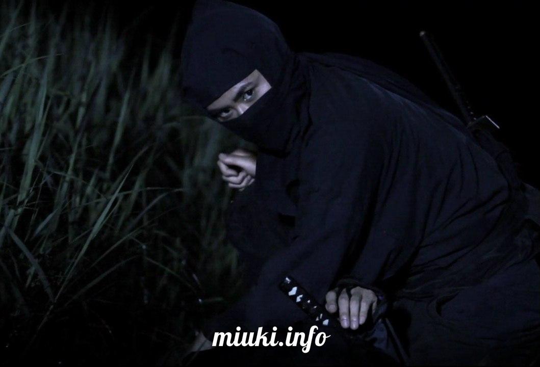 Ниндзя - герои, наемники, предатели