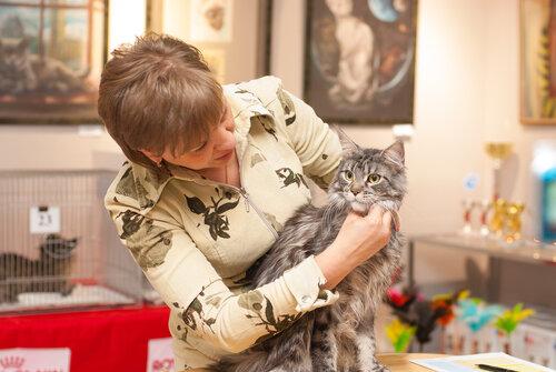 """Международная выставка кошек AFC """"Удивительные лесные кошки"""", 1 марта 2014 г. Сургут 0_b25bb_75c0a341_L"""