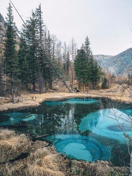 Живое гейзерное озеро в глубине Алтайской республики (5 фото)