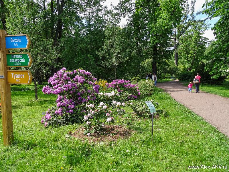 Ботанический сад, парковая зона