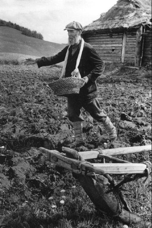 18-Хлеб для партизан. Новгородская область 1942.jpg