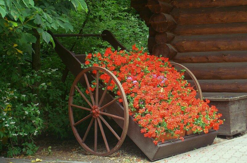 Ах…накатить ли нам по этакому поводу…цветов…:-)))