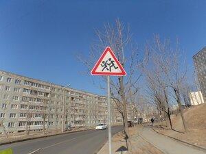 На улицах Владивостока появились новые дорожные знаки