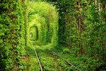 1320618925_tonnel_lyubvi-spaces_ru.jpg