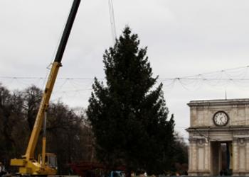 Рождественнская ёлка была демонтирована с ПВНС