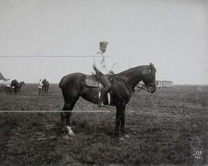 Офицер лейб-гвардии конного полка на плацу перед началом маневров.