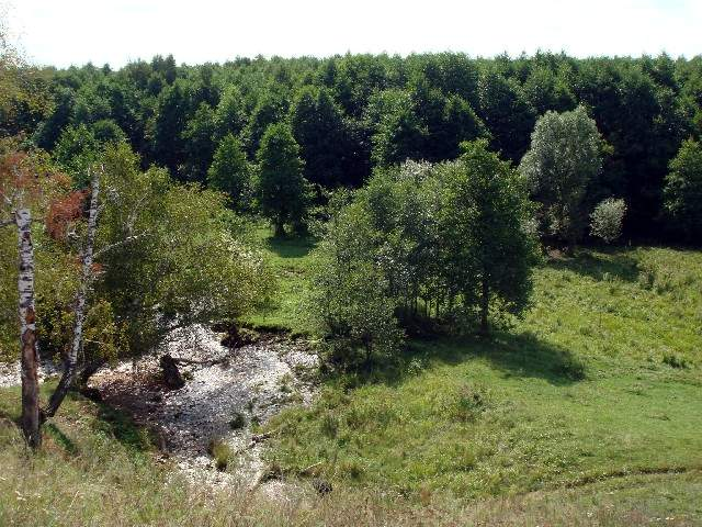 Родники и источники Черемшанского района РТ
