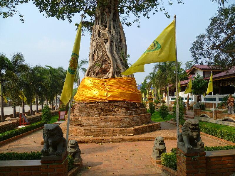 Таиланд, Аюттайя (Thailand, Ayutthaya)