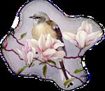 http://img-fotki.yandex.ru/get/9830/97761520.1d/0_7d619_f7851a38_orig.png