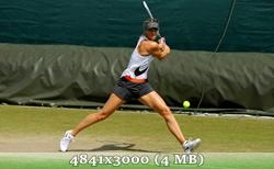 http://img-fotki.yandex.ru/get/9831/14186792.14/0_d886a_85e50960_orig.jpg