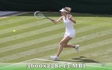 http://img-fotki.yandex.ru/get/9831/14186792.27/0_d8fd8_f7a0d96b_orig.jpg