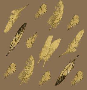 Feather pattern-1.jpg