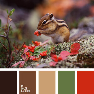 подборка цвета