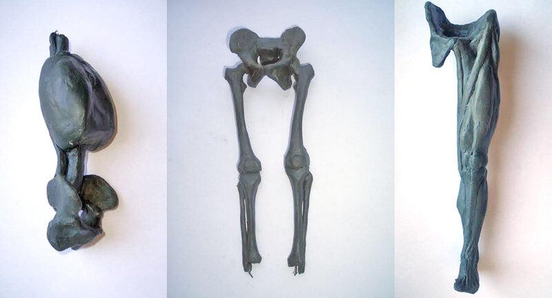 части тела.jpg