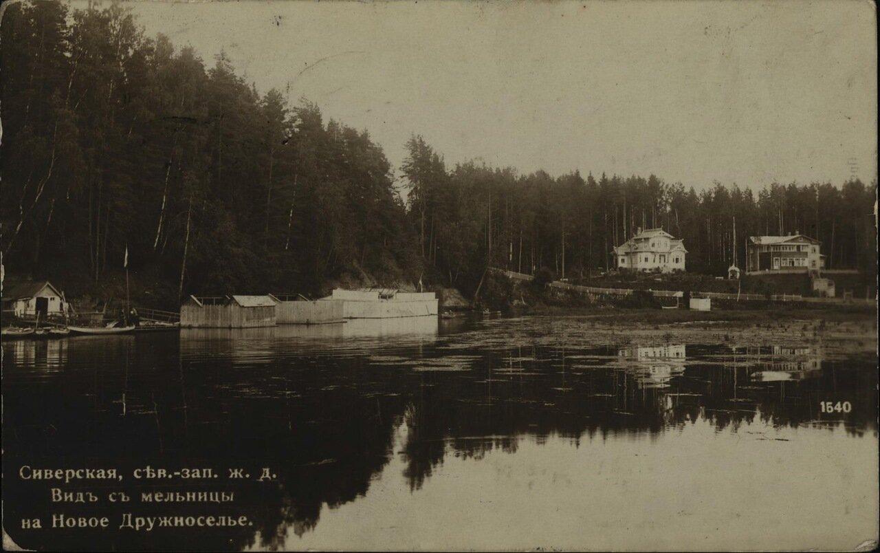 Вид с мельницы на Новое Дружеселье
