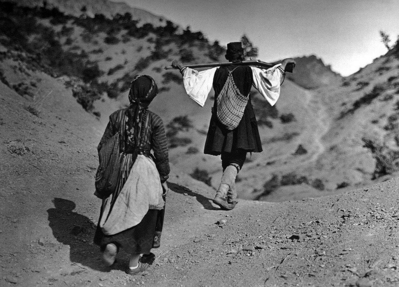1913. Кавалари, Загория