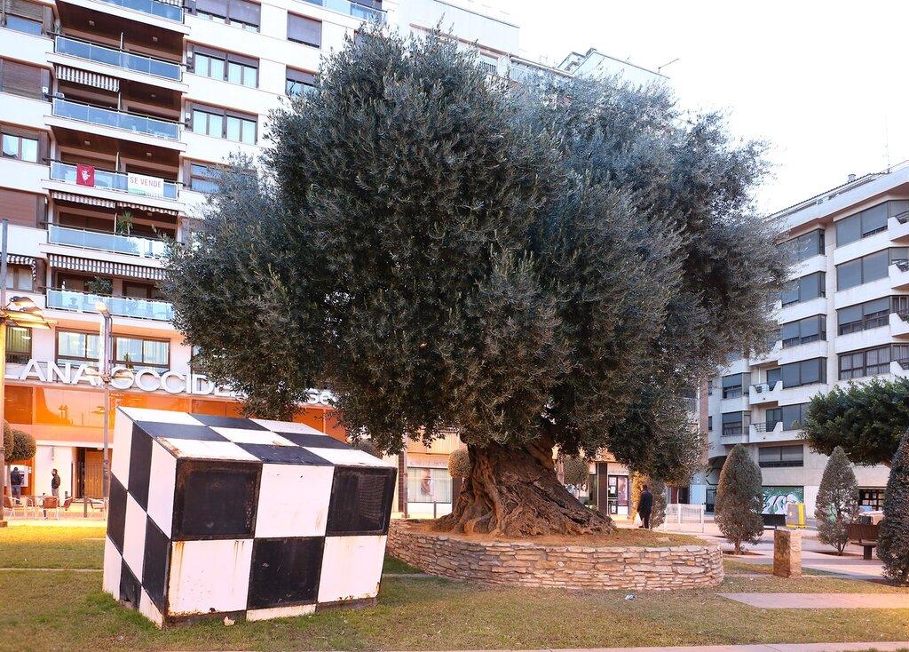 Castellon de la Plana, Castellon de La Plana, sculpture Dados. (Dice) Plasa de la Olivera - the area of the olive tree