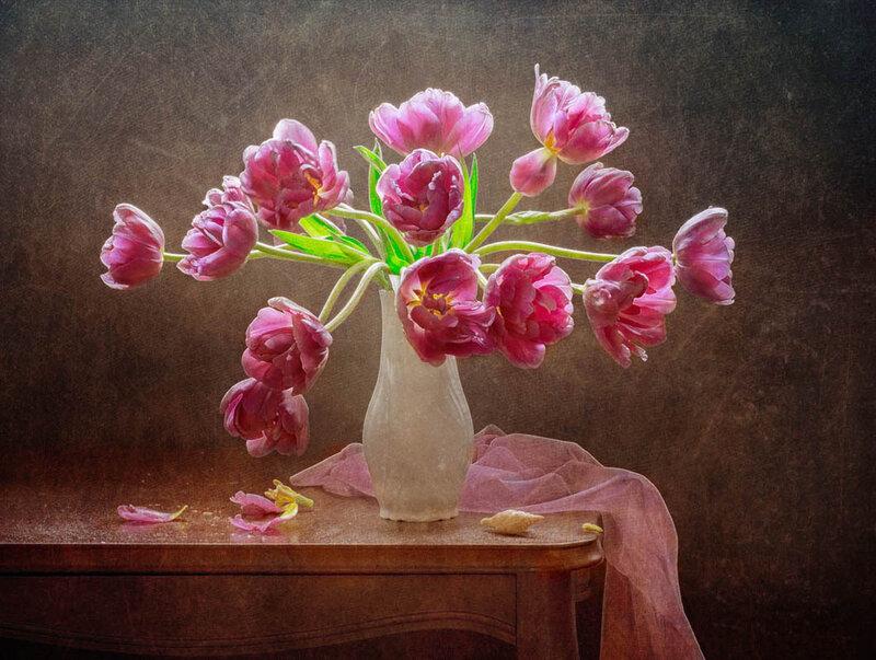 Тюльпаны распустились