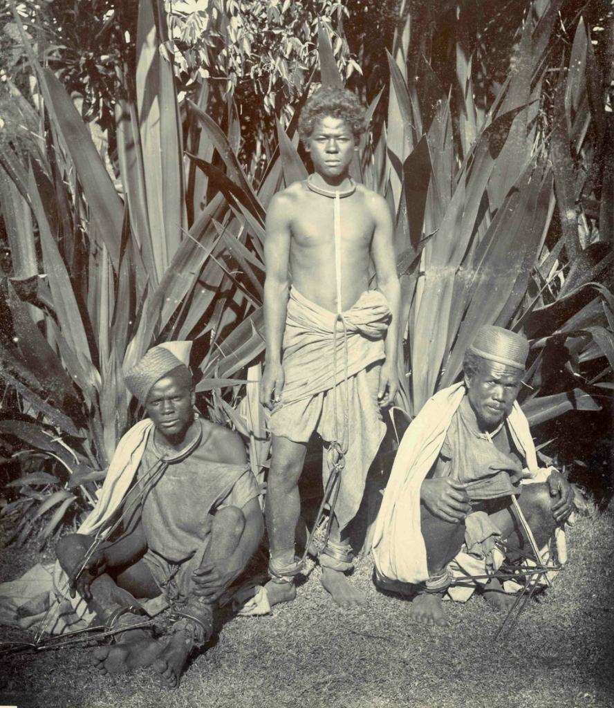 коренные жители Африки 1870-1930