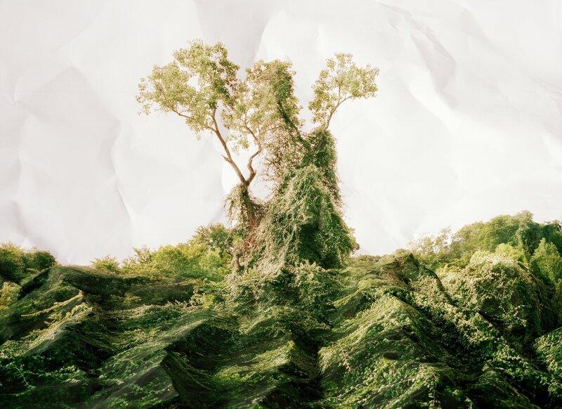 Искаженная фотолюбовь к реальности Лауры Плэйджмэн. 17 фото нереальности.